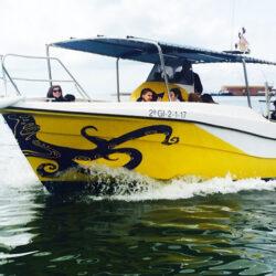 La Barca de Pau
