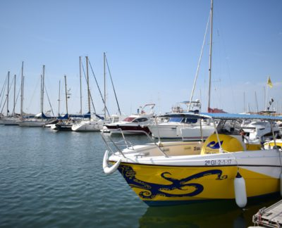 DSC_0345-400x324-barco
