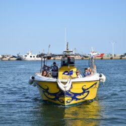 barca-pau-web